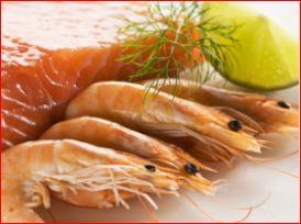 RDM Shrimp
